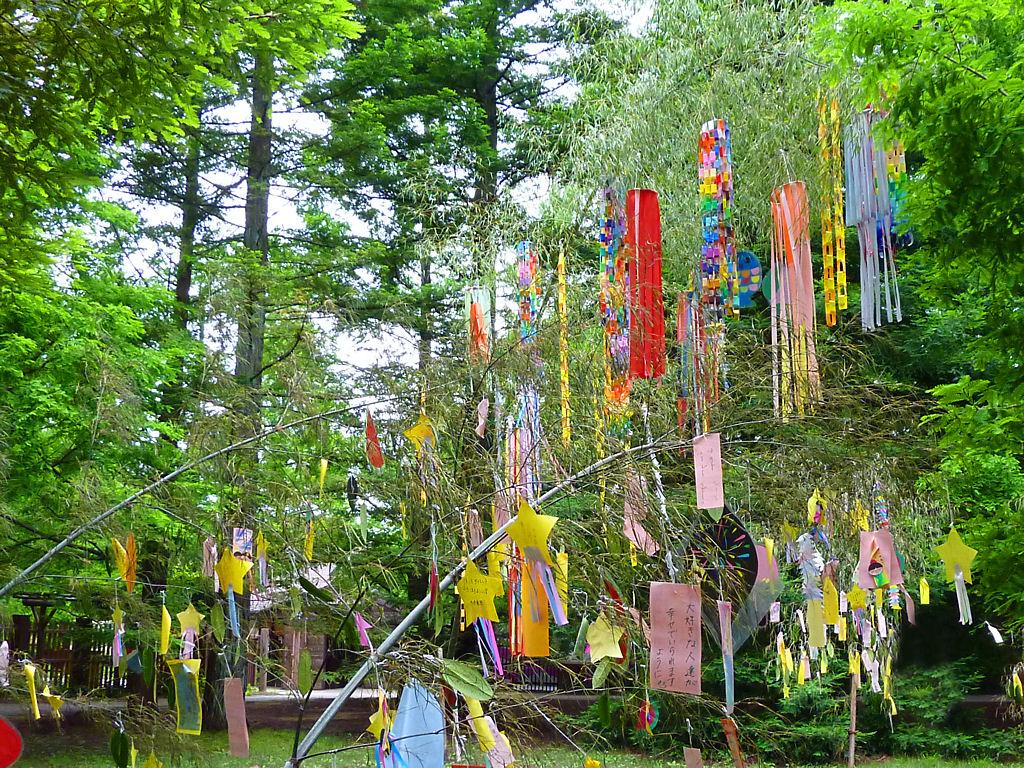 tanabata_0002