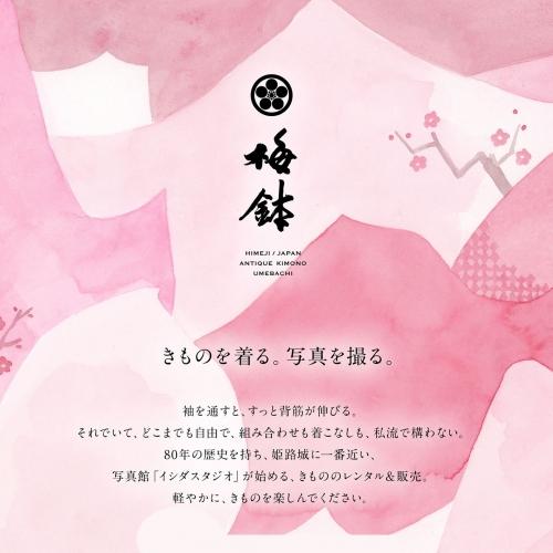 ~ANTIQUE KIMONO 梅鉢 HPついにお披露目♪~